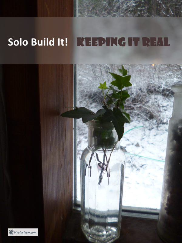Solo Build It! Keeping It Real