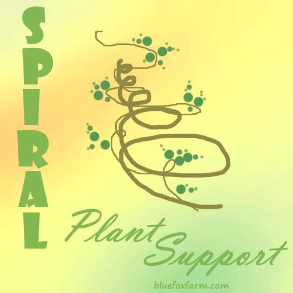 Spiral Plant Support