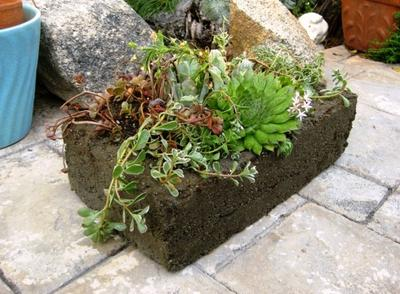 Stone Like Hypertufa Trough
