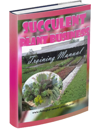 The Succulent Plant Business Training Manual