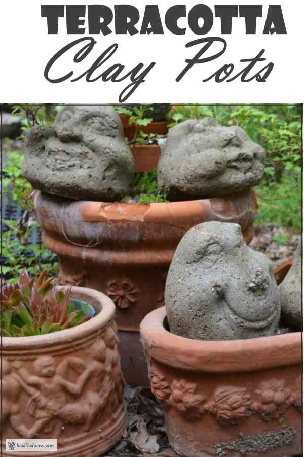 Terracotta Clay Pots