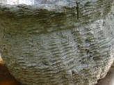 Hypertufa Molds