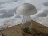 Mushroom Solar Lights...