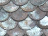 Rustic Fish Scale Shingles