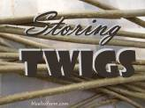 Storing Twigs for Crafts