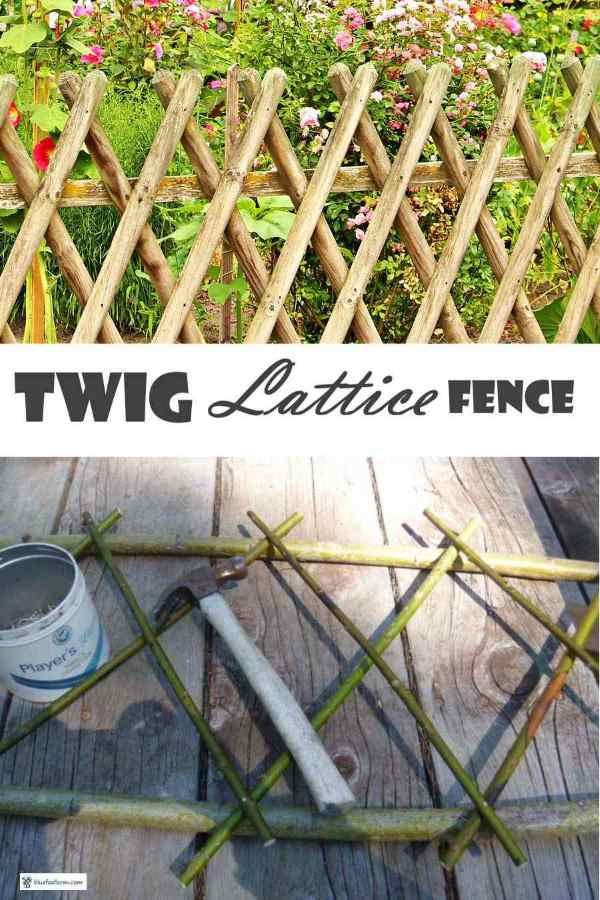 Twig Lattice Fence flanking a rustic garden arch