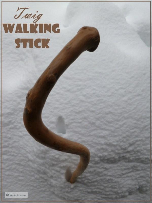 Twig Walking Stick