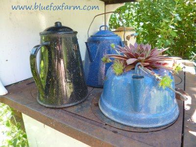 Eclectic grouping of enamel ware kettles and coffee pots
