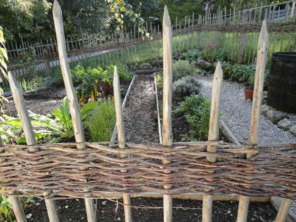 Classic Willow Wattle Fence