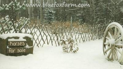How to build a Lattice Fence - go there now...
