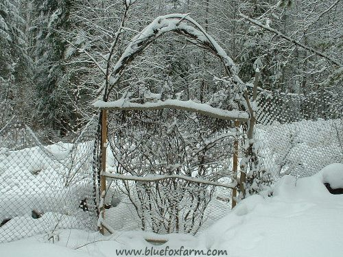 Rebar archway over a rustic gate
