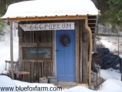 Rustic Garden Shed Eggporeum