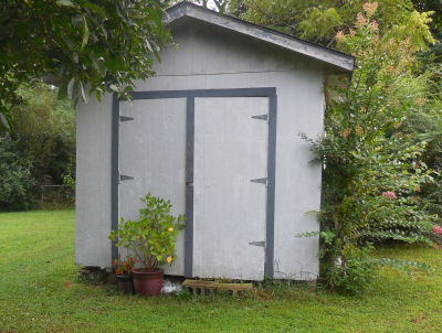 Help The Gardening Cook fix up her poor little shed...