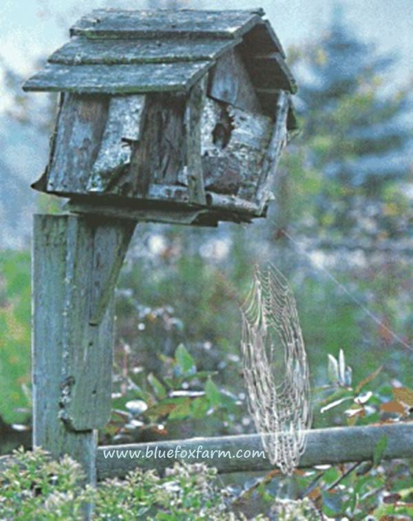 Really rustic bird house - perched on a fence...