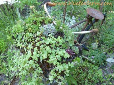 Got junk?  Make it an integral part of your garden decor!