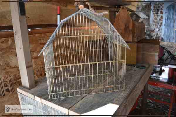 Barn shaped bird cage