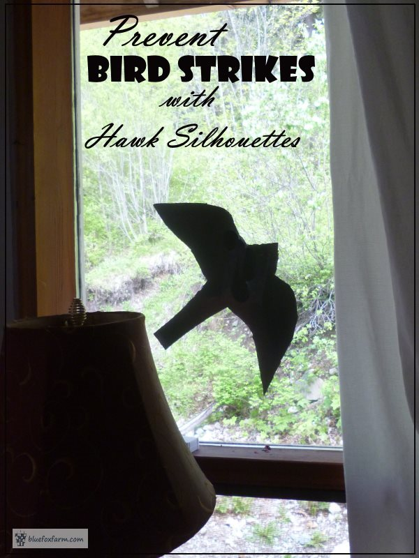 Prevent Bird Strikes on your windows with hawk silhouettes