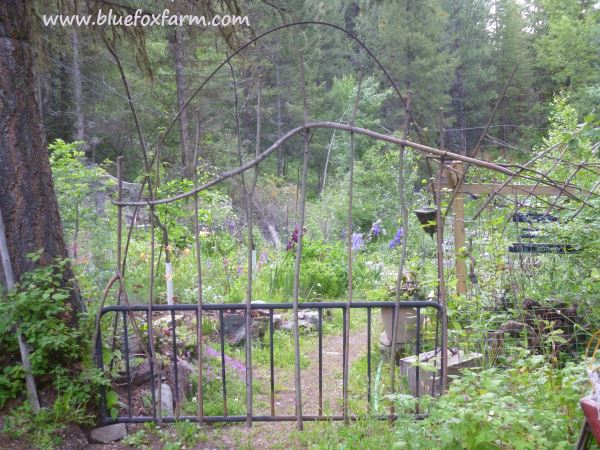 See more about this Rustic Twig Gate and how I made it here;