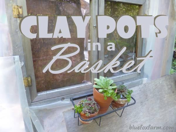 Clay Pots in a Basket