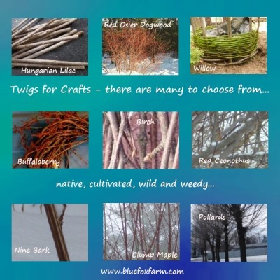 Twigs for Crafts - it takes all kinds...