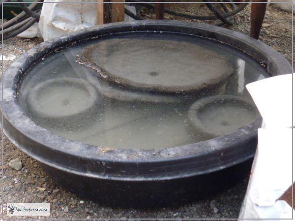 Curing Hypertufa in a water bath