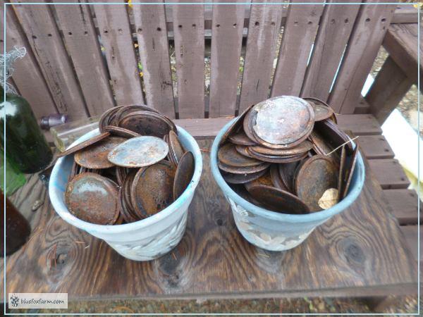 Over Six Hundred Mason Jar Lids