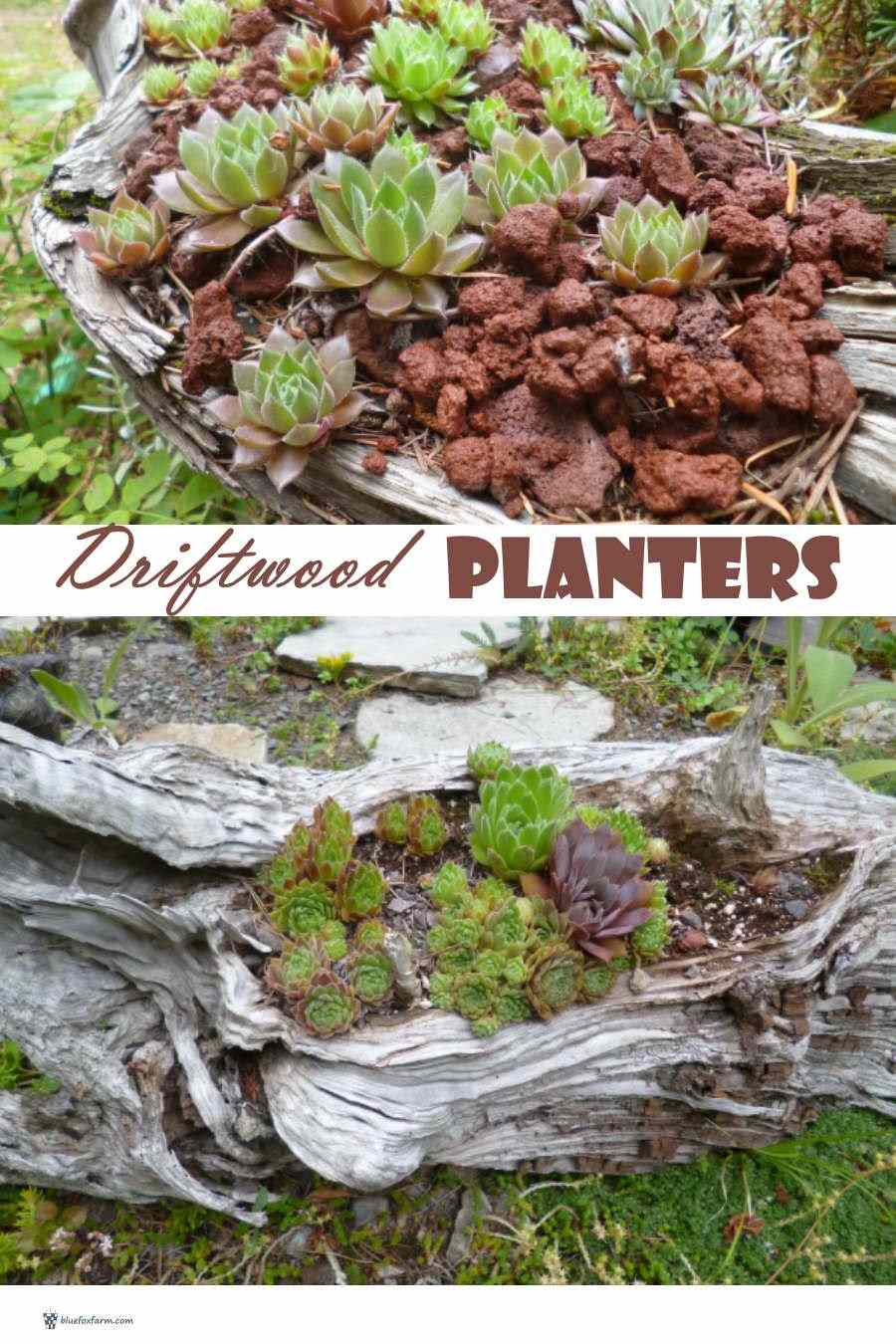 Weathered and distressed Driftwood Planter