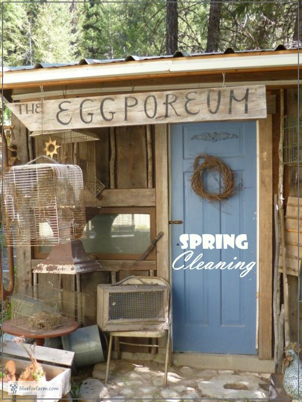 The Eggporeum - Spring Cleaning