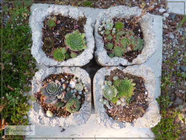 Four hypertufa pots grouped together