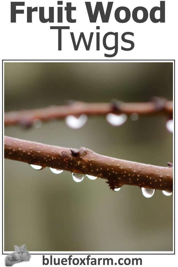 Fruit Wood Twigs