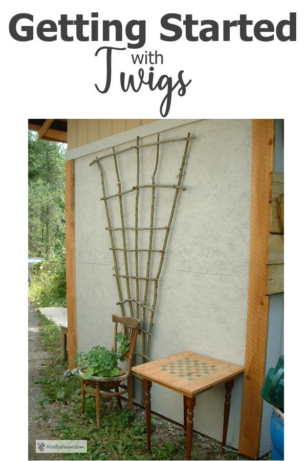 Getting Started With Twigs - make your own twiggy crafts