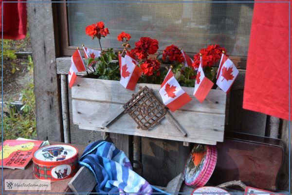 Red Geraniums in a rustic window box