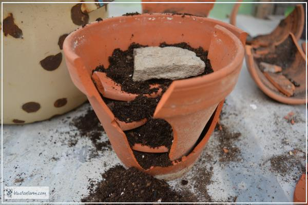 Tiny steps made from the edge of a clay pot are one of the first stages of a fairy garden