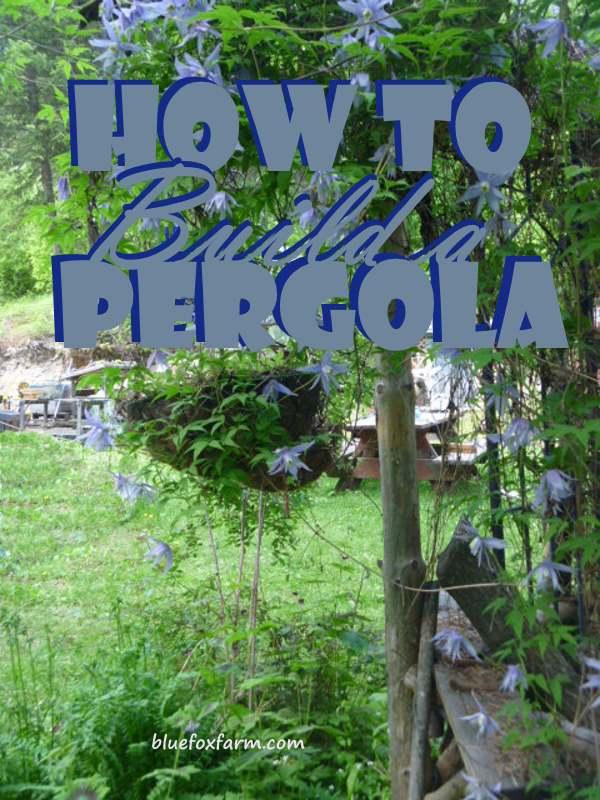 How to Build a Pergola