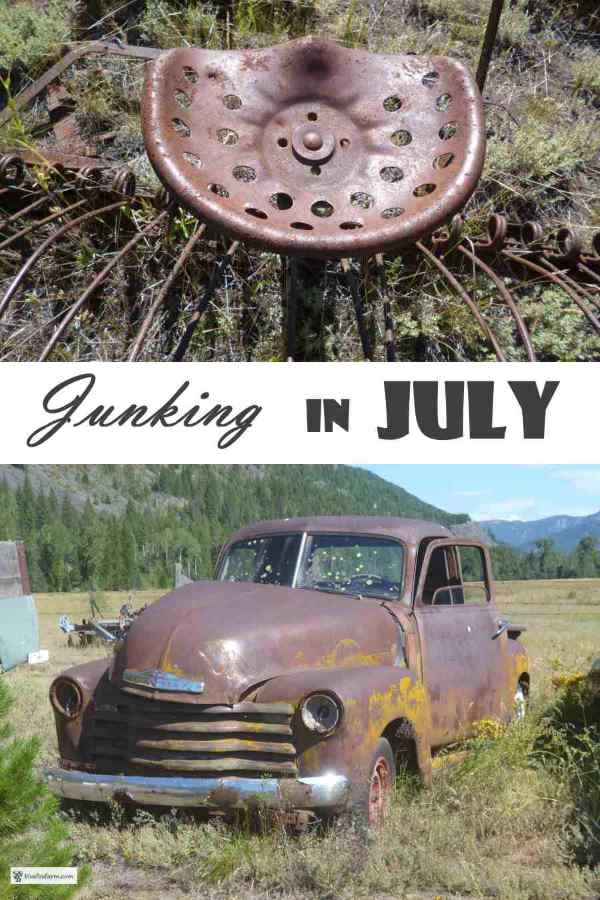 Junking in July - a quick road trip gleans a lot of potential garden art...