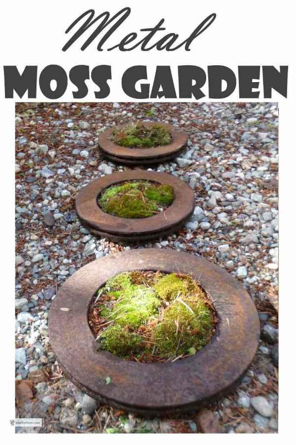 More Garden Art From Trash - Make a Metal Moss Garden from rusty brake parts