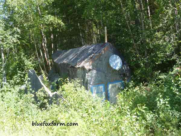 Then there's this shed, which is actually a rock decorated to look like one