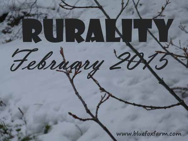 Rurality Issue #17 February 2015