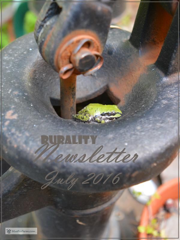 Rurality Issue July 2016