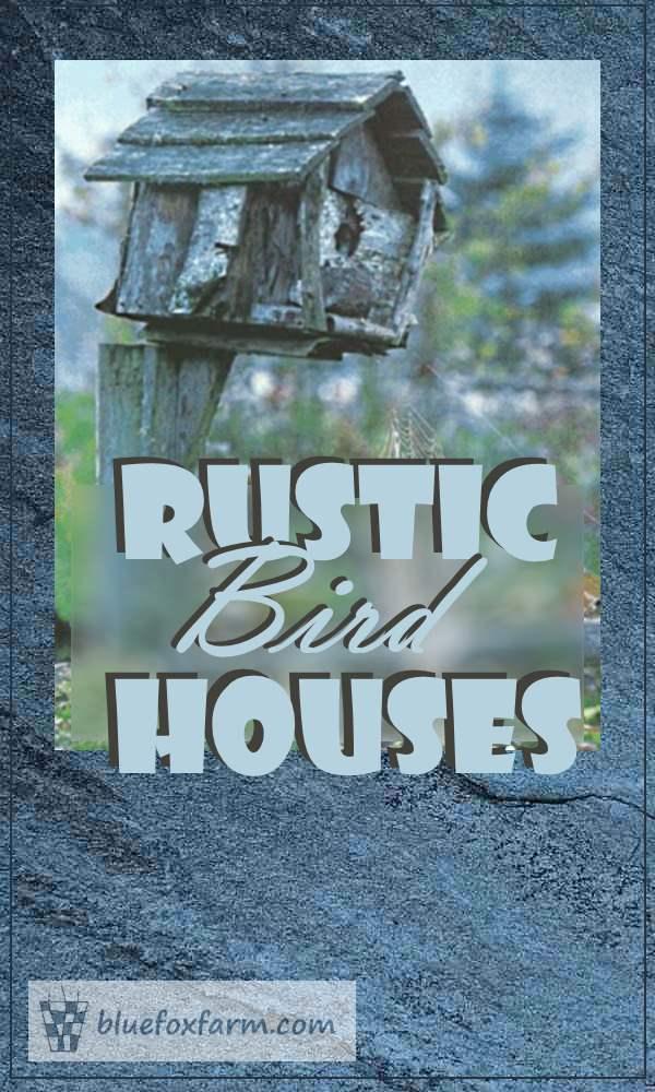 Rustic Bird House Round up...