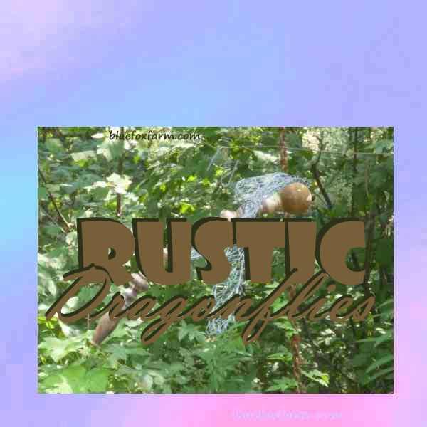 Rustic Dragonflies