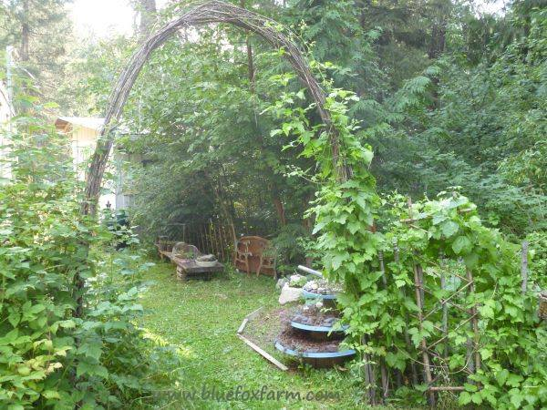 Rustic Twig Archway frames the view...