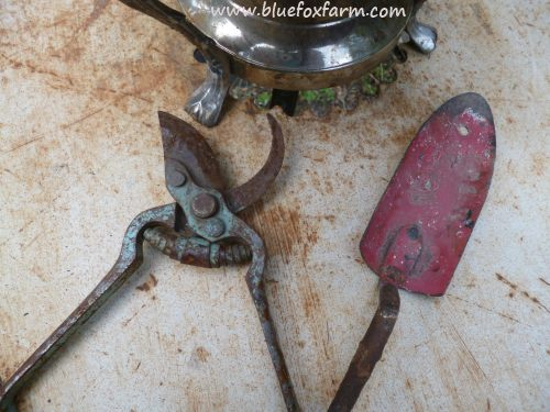 Vintage and rustic garden tools emphasize the theme...