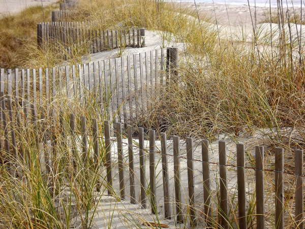 Snow or sand fencing