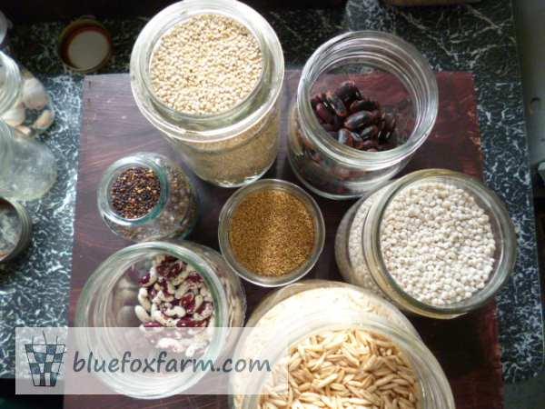 Seed Craft Supplies