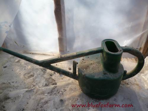 My favorite Hawes watering can - it has perfect balance...