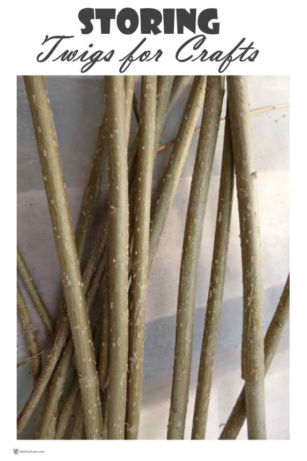 Storing Twigs