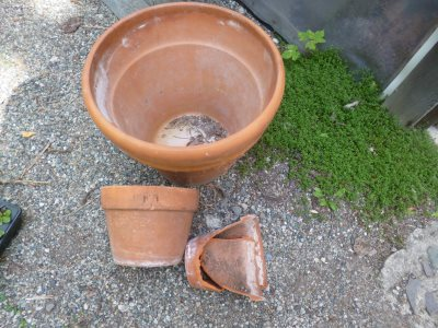 Oh, no!  They're broken - not to worry, there is a good use for smashed terracotta pots...