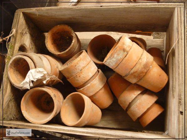 Vintage Terracotta Clay Pots
