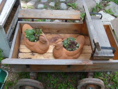 Terracotta hens with hens and chicks
